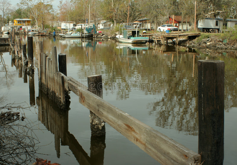 Louisiana-sumpfiger Flussarm stockfotos
