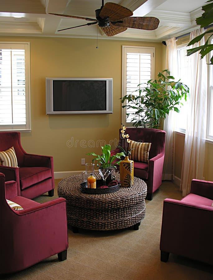 Download Lounge stock image. Image of decorate, interior, flatscreen - 823123