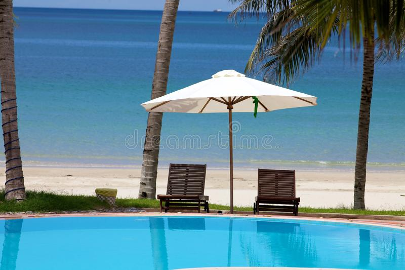 Download Lounge by Ocean Beach stock photo. Image of trees, pool - 14961574