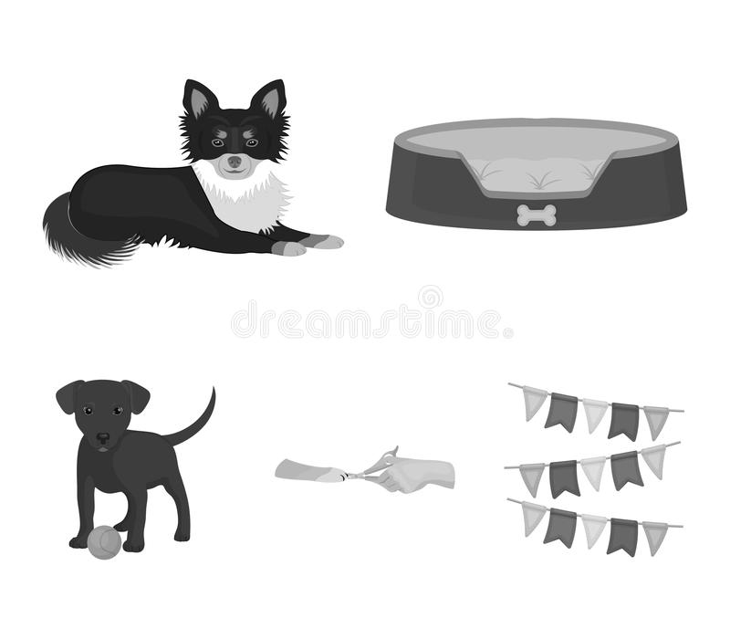 Lounger for a pet, clipping of claws in a vet clinic, lying dog, puppy with a ball. Vet clinic and pet,dog care set. Collection icons in monochrome style vector vector illustration