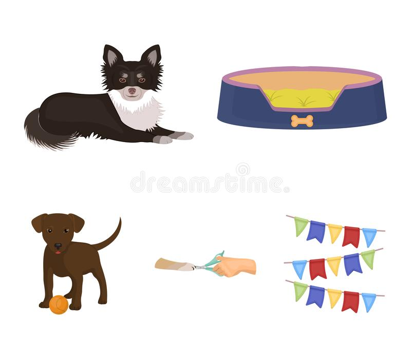 Lounger for a pet, clipping of claws in a vet clinic, lying dog, puppy with a ball. Vet clinic and pet,dog care set. Collection icons in cartoon style vector royalty free illustration