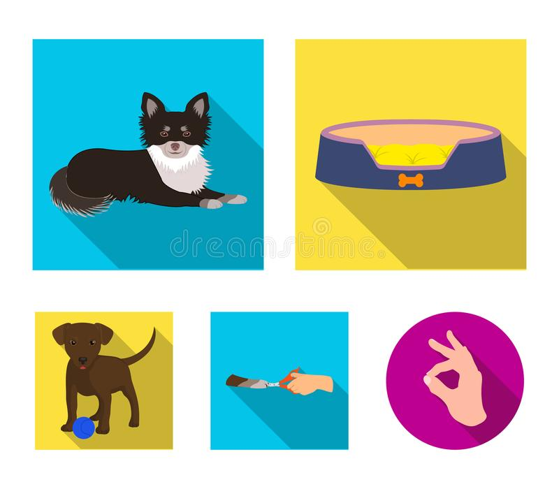 Lounger for a pet, clipping of claws in a vet clinic, lying dog, puppy with a ball. Vet clinic and pet,dog care set. Collection icons in flat style vector vector illustration