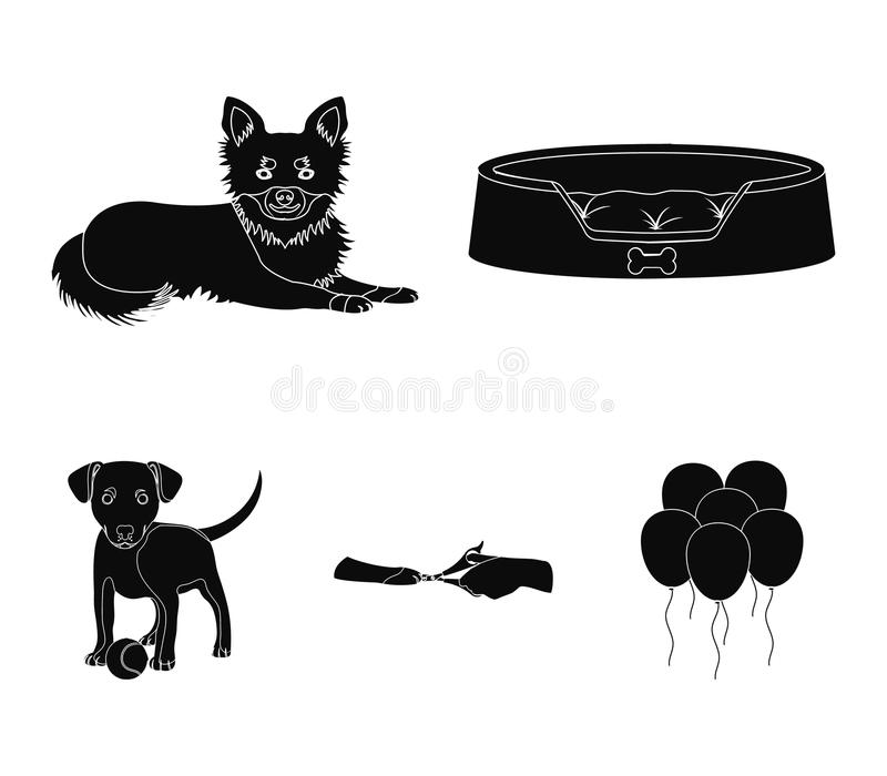 Lounger for a pet, clipping of claws in a vet clinic, lying dog, puppy with a ball. Vet clinic and pet,dog care set. Collection icons in black style vector vector illustration