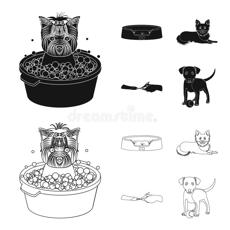 Lounger for a pet, clipping of claws in a vet clinic, lying dog, puppy with a ball. Vet clinic and pet,dog care set. Collection icons in black,outline style vector illustration