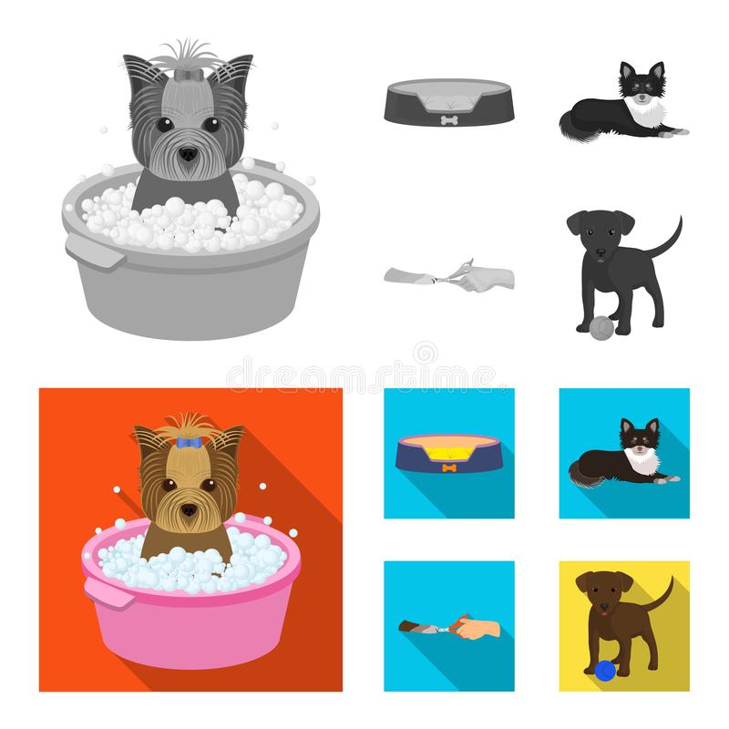 Lounger for a pet, clipping of claws in a vet clinic, lying dog, puppy with a ball. Vet clinic and pet,dog care set. Collection icons in monochrome,flat style royalty free illustration