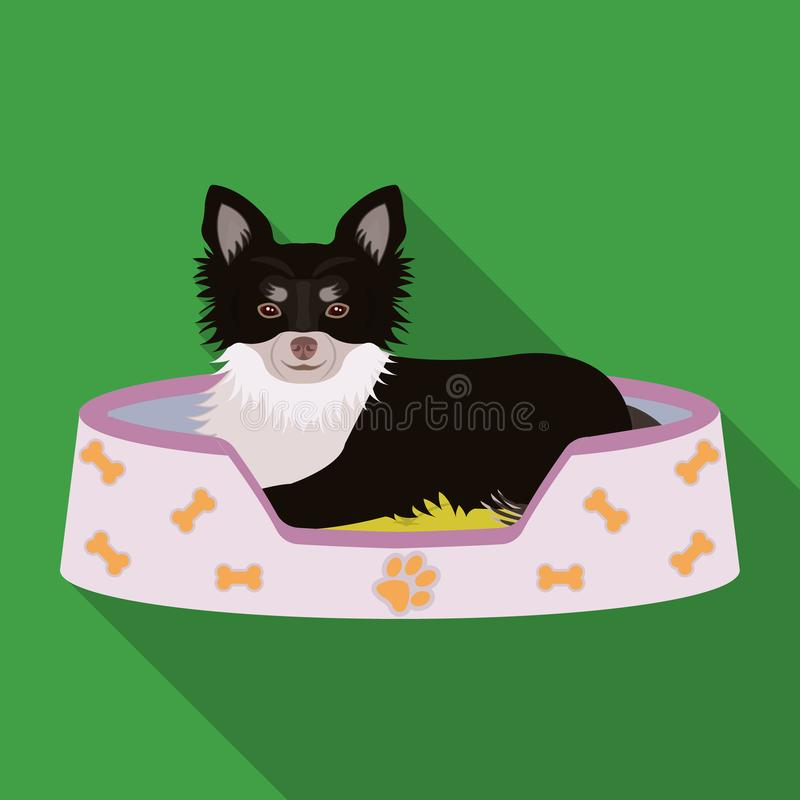 Lounger for a pet, a sleeping place. Dog,care of a pet single icon in flat style vector symbol stock illustration web. Lounger for a pet, a sleeping place. Dog vector illustration