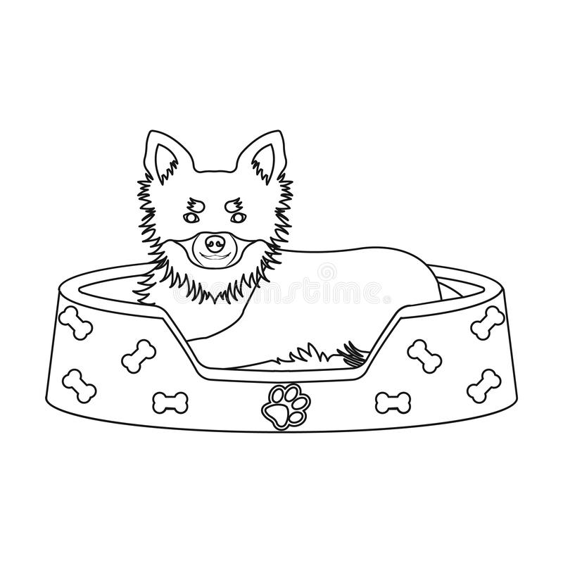Lounger for a pet, a sleeping place. Dog,care of a pet single icon in outline style vector symbol stock illustration web. Lounger for a pet, a sleeping place vector illustration