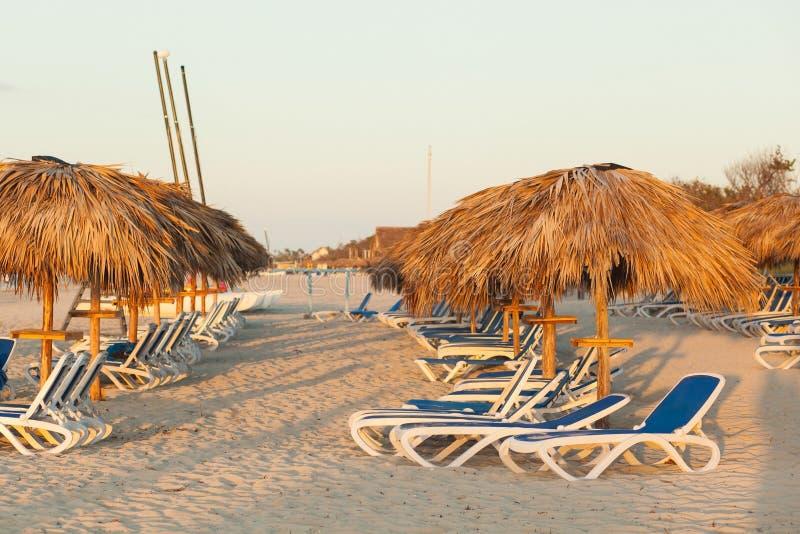 Loungers под пальмой выходят зонтики на пляж Куба Va стоковые фото
