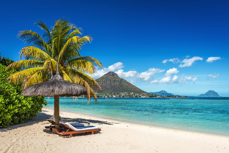 Download Loungers And Umbrella On Tropical Beach In Mauritius Stock Image - Image of coastline, mauritius: 96700765