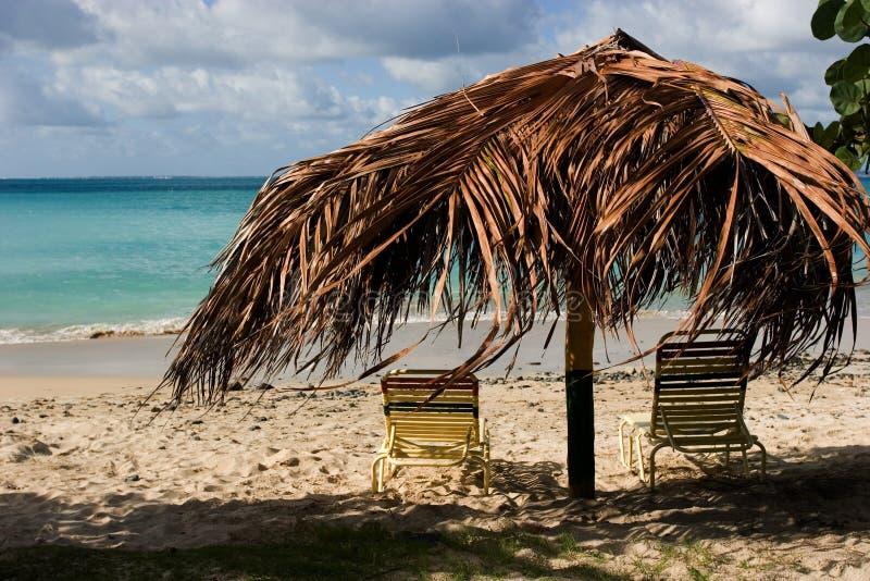 Lounging dans les tropiques image stock