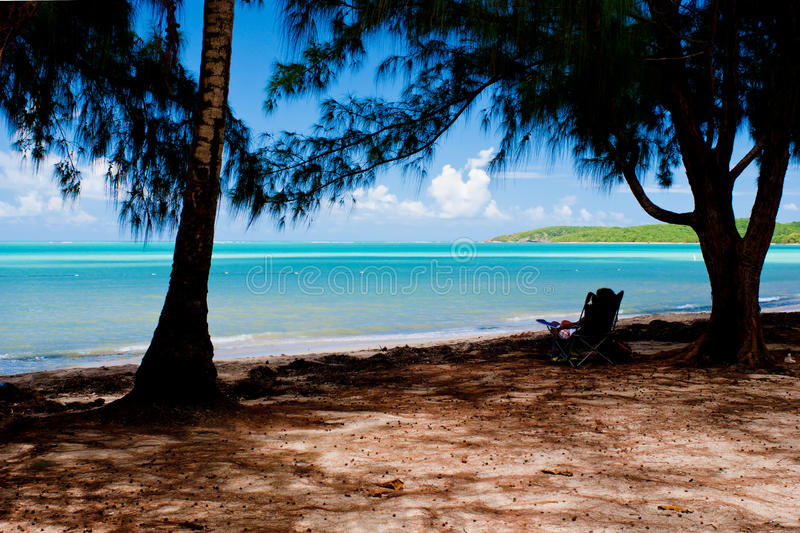 Lounging, seven seas beach. Lounging in the shade, at seven seas beach, puerto rico royalty free stock photography
