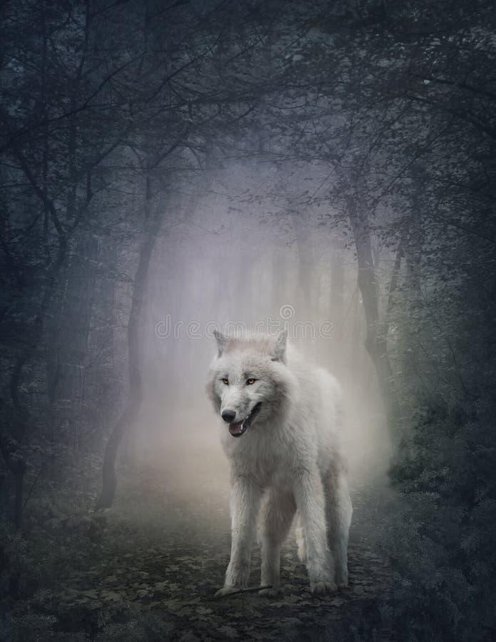 Loup blanc photographie stock libre de droits