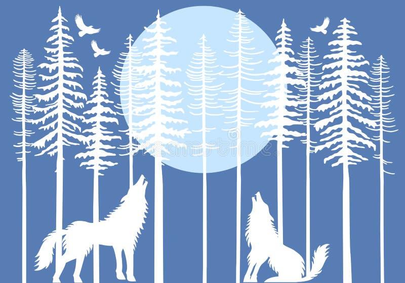 Loup d'hurlement dans la forêt d'arbre de sapin, vecteur illustration libre de droits