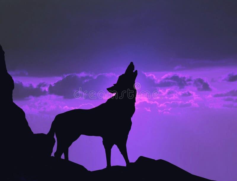 Loup hurlant sur une falaise de montagne photo stock