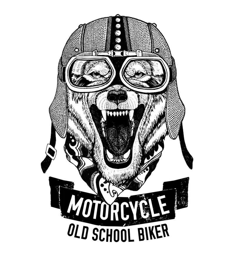 LOUP sauvage pour la moto, T-shirt de motard illustration libre de droits