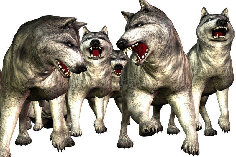 Loups (Wolfs) illustration libre de droits