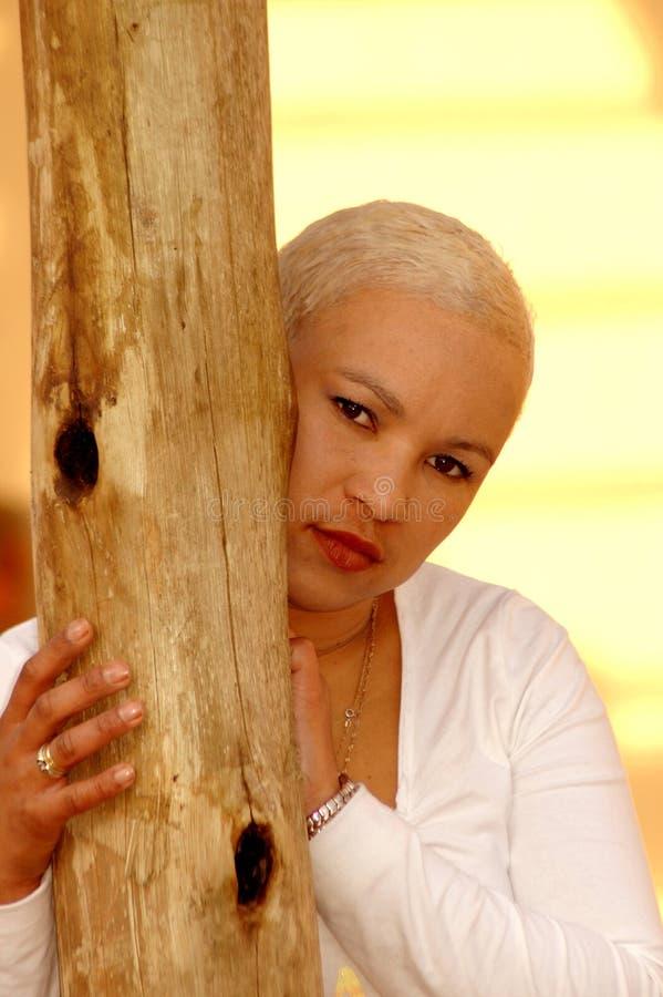 Louro africano fotografia de stock