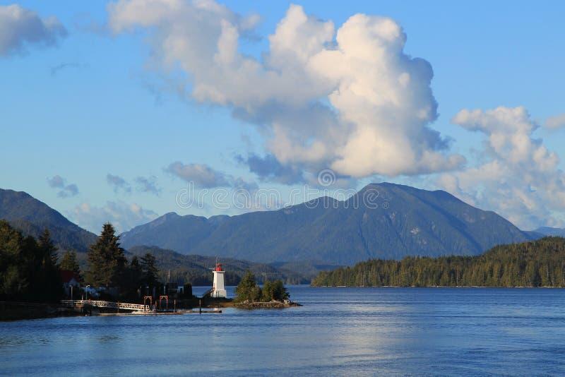 Louro alerta, Alaska foto de stock