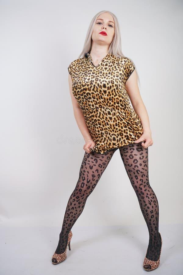 Louro carnudo bonito da platina com os bordos vermelhos que vestem o vestido curto da cópia do leopardo e a meia-calça preta no fotos de stock royalty free