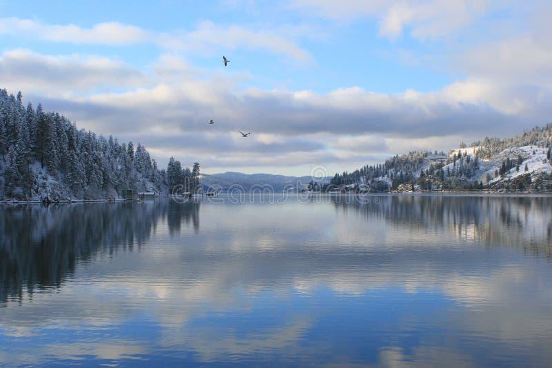 Louro da beleza no lago do d'Alene de Coeur, Idaho imagens de stock royalty free
