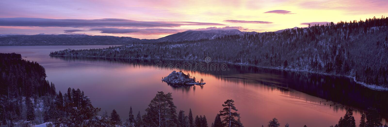 Louro da esmeralda, Lake Tahoe, CA fotografia de stock