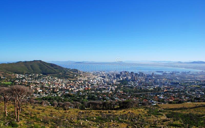 Louro de Capetown e de tabela (África do Sul) fotos de stock