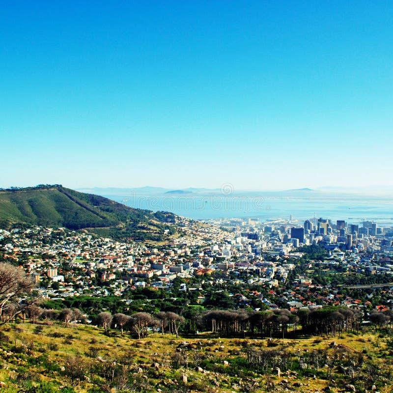 Louro de Capetown e de tabela (África do Sul) imagens de stock