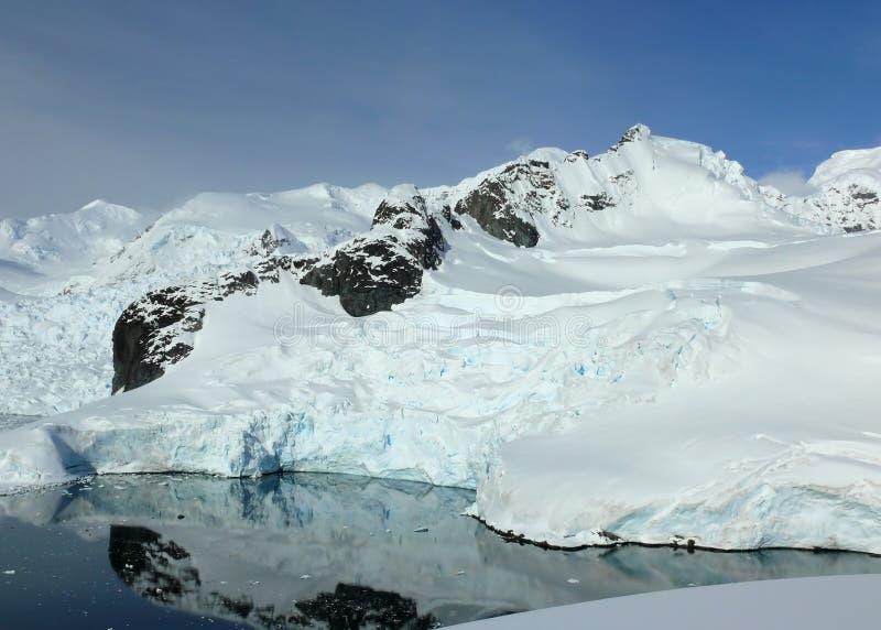 Louro de geleira calmo em continente antárctico imagens de stock
