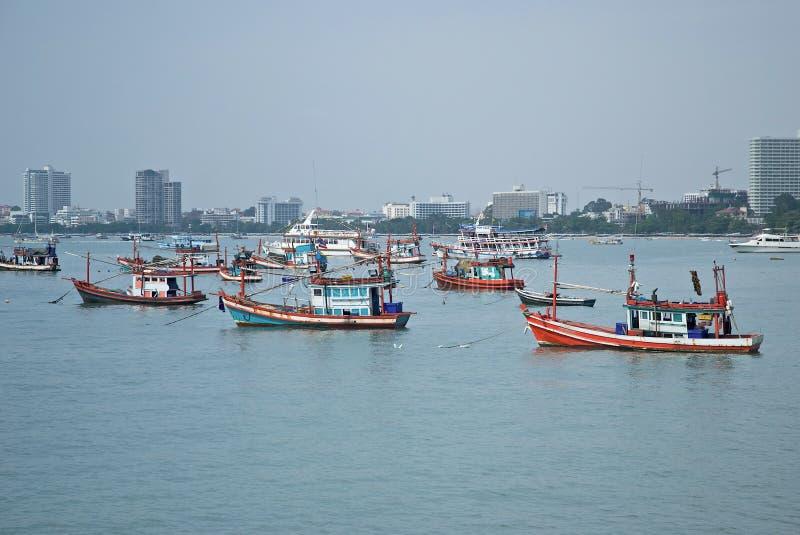 Louro de Pattaya imagem de stock royalty free