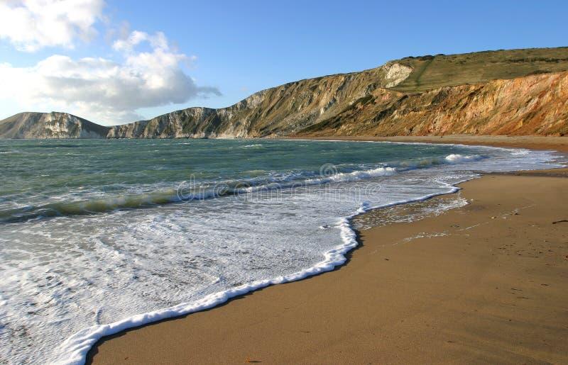 Louro de Worlbarrow, Dorset foto de stock
