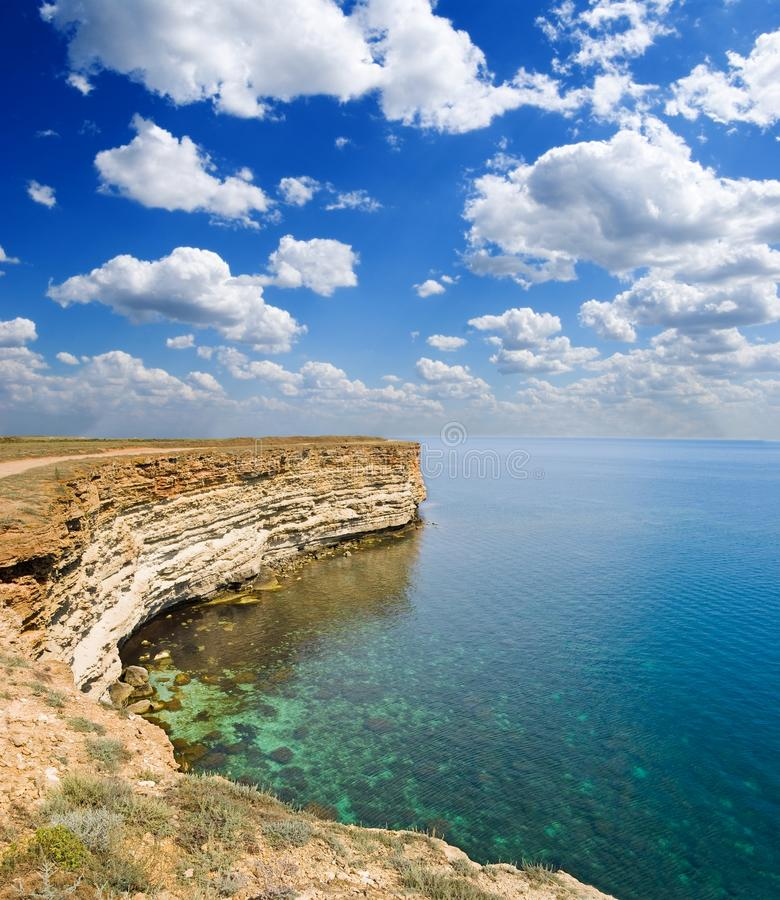 Louro do mar da esmeralda imagens de stock royalty free