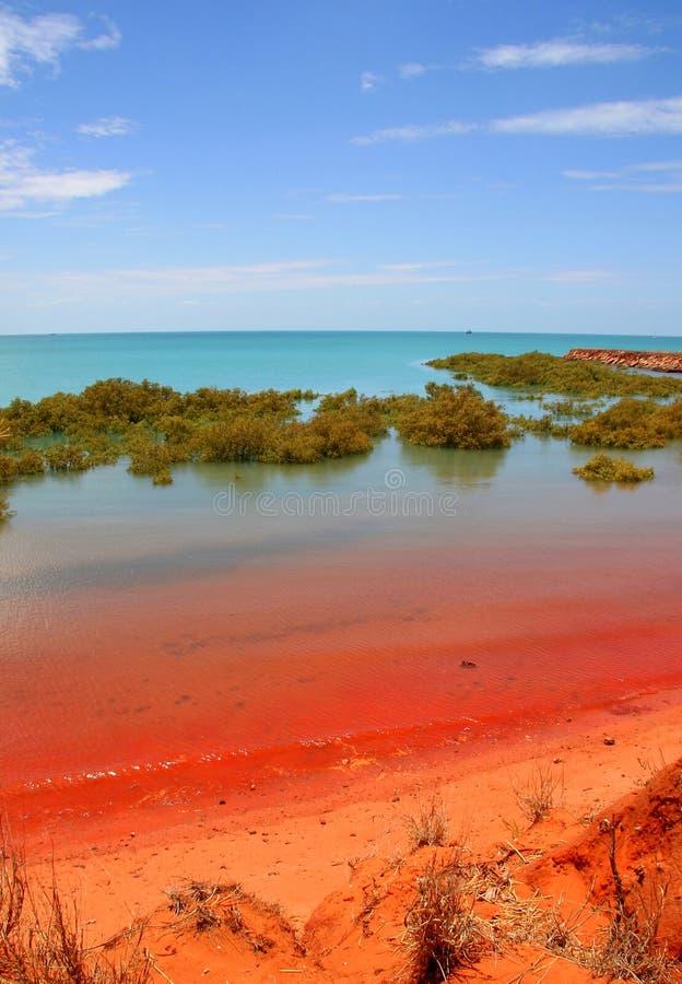 Louro do Roebuck, Broome, Austrália imagens de stock royalty free