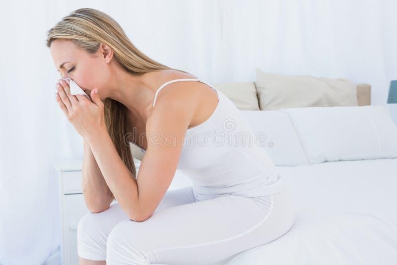 Louro doente que funde seu nariz no tecido imagens de stock