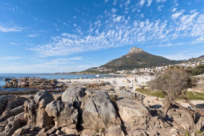 Louro dos acampamentos e leões Cape Town principal África do Sul foto de stock