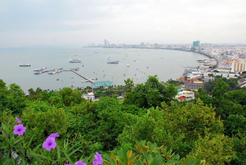 Louro Tailândia de Pattaya foto de stock royalty free