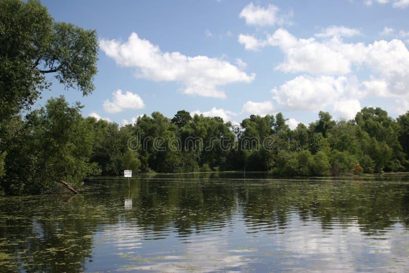 Lousiana sumpfiger Flussarm stockfotografie