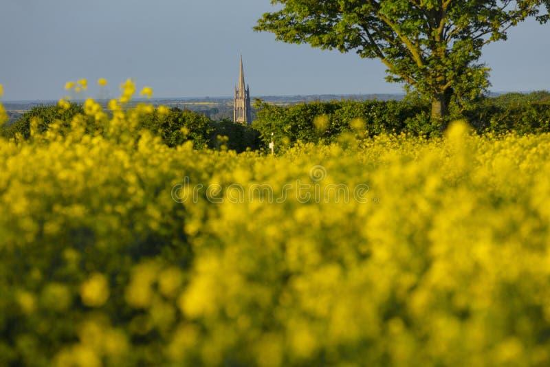 Louth, Lincolnshire, UK, Maj 2019, A iglica St James kościół w miasteczku Louth w Wolds widok zdjęcie stock