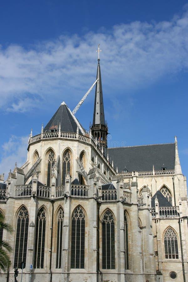 Louvain images libres de droits