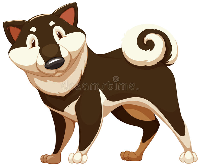 Lovable brown dog. Standing on a white background stock illustration