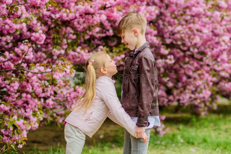 Love is in the air. Couple adorable lovely kids walk sakura garden. Tender love feelings. Little girl and boy. Romantic stock photo