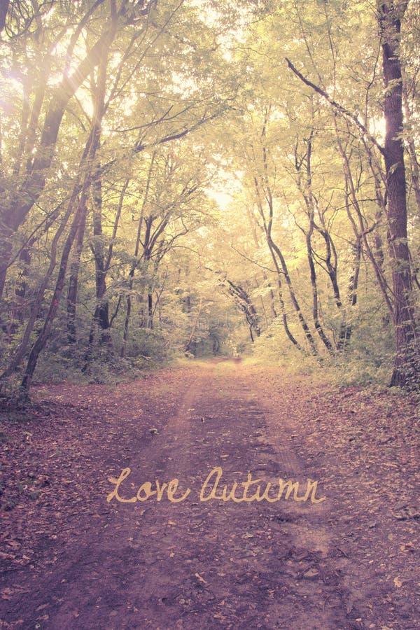 Love autumn postcard stock images