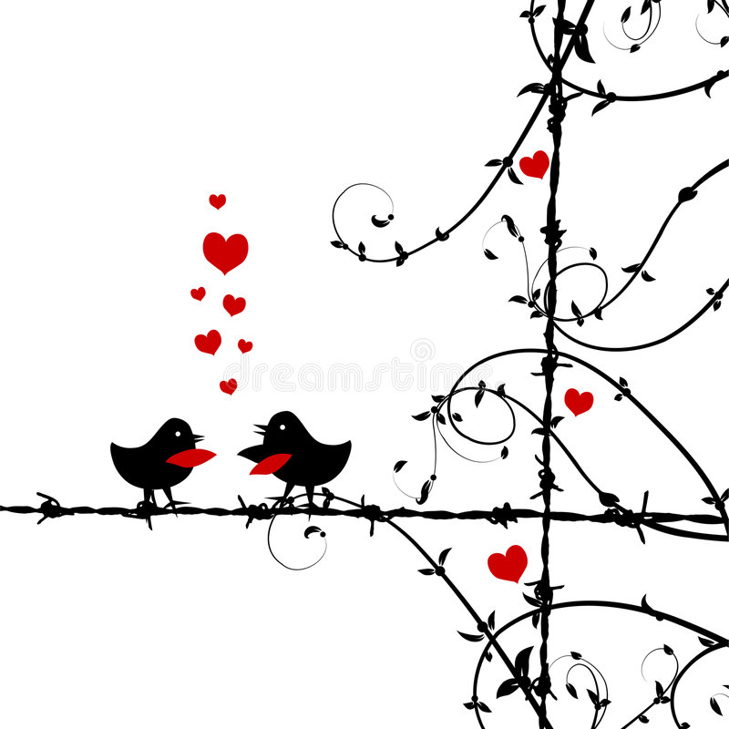 Love, birds kissing on branch royalty free illustration