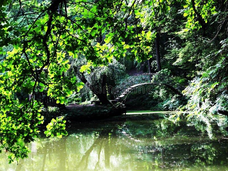 Love bridge in Krasnokutsky arboretum royalty free stock images