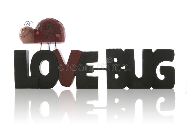 Download Love Bug stock image. Image of conceptual, valentines - 3947151