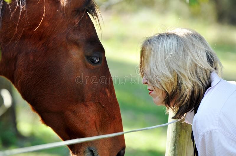 Love and care between lady and pet horse royalty free stock photography