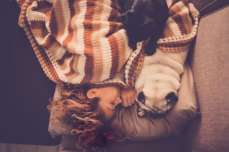 Love concept with dog animals and people- beautiful sweet woman sleep at home on the sofa with her two lovely best friend pugs royalty free stock photos