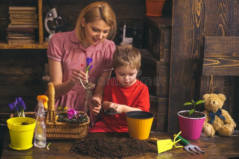 Love concept. Woman and little child plant flowers with love. Grown with love. Love and protect nature.  royalty free stock photo