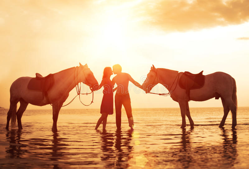 In love couple kissing on the beach. Two horses at sunset, summer scene. sunset in the sea royalty free stock photo