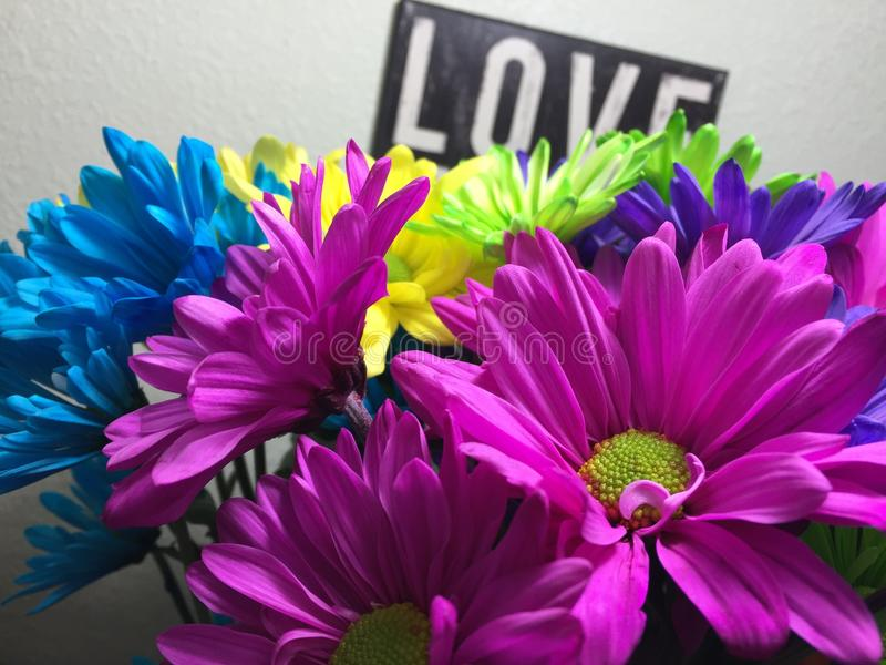 Love and Flowers royalty free stock photography