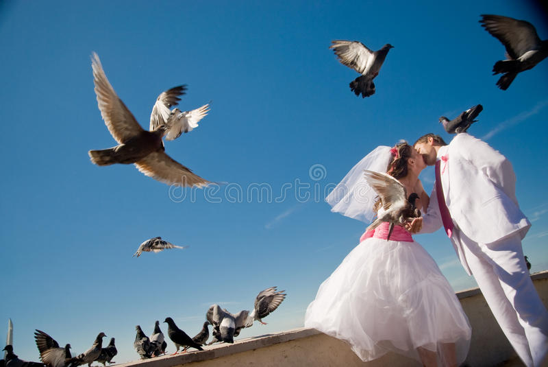 Love gives wings. Just married couple kissing and feeding pigeons